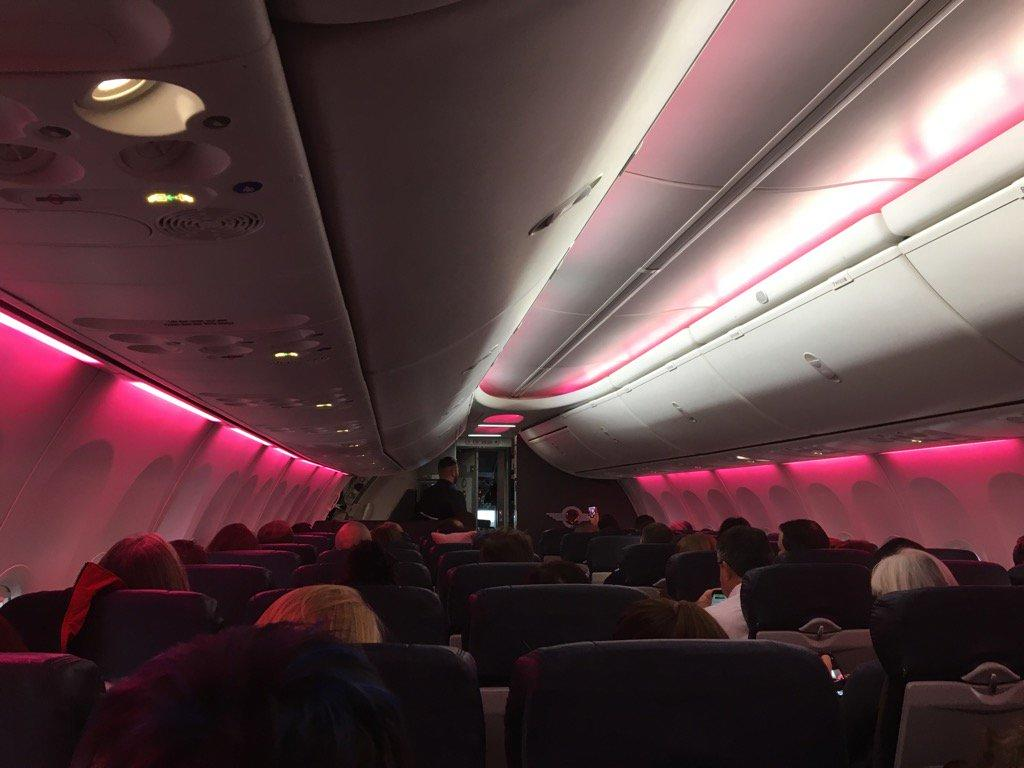 Airline Turns Cabin Pink for Women's March