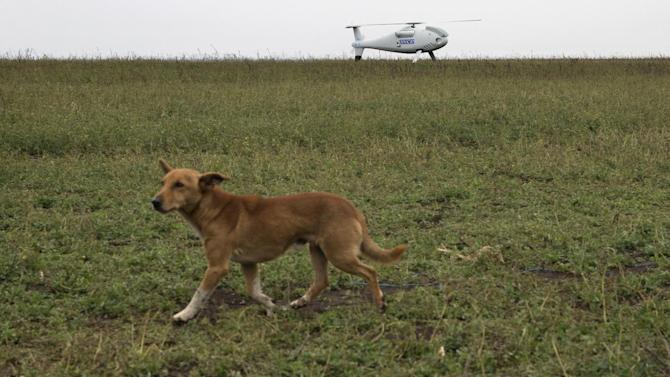 A dog walks past an Unmanned Aerial Vehicles (UAVs) operated by the Organization for Security and Co-operation in Europe (OSCE) mission to Ukraine near the town of Mariupol, eastern Ukraine, Thursday, Oct. 23, 2014. The OSCE Unmanned Aerial Vehicles (UAVs) will be used by the OSCE mission to monitor a Moscow-backed truce deal between Ukraine and pro-Russian separatists in the Donetsk region. (AP Photo/Dmitry Lovetsky)