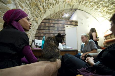 "Customers enjoy a beverage next to a cat at the ""Cafe des Chats"" several days before the inauguration in Paris"