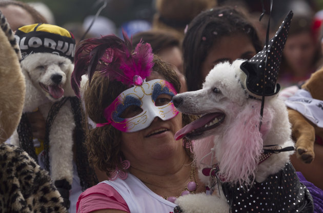 "A woman carries her disguised dog during the ""Blocao"" dog carnival parade in Rio de Janeiro, Brazil, Sunday, Feb. 3, 2013. According to Rio's tourism office, Rio's street Carnival this year will consi"