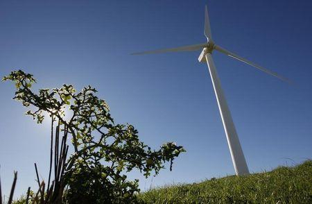 South Africa seen green energy model for the continent