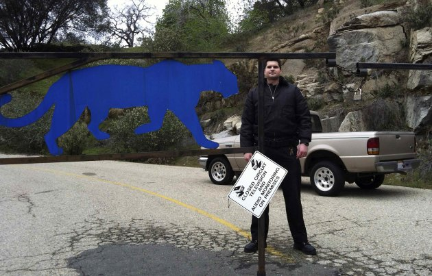 Security guard stands by gate of Cat Haven sanctuary near Dunlop, California, day after lion killed volunteer intern that entered its cage at facility
