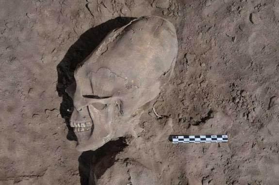 'Alien-Like' Skulls Excavated in Mexico