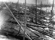 FILE - In this 1953 file photo, trees lie strewn across the Siberian countryside 45 years after a meteorite struck the Earth near Tunguska, Russia. The 1908 explosion is generally estimated to have been about 10 megatons; it leveled some 80 million trees for miles near the impact site. The meteor that streaked across the Russian sky Friday, Feb. 15, 2013, is estimated to be about 10 tons. It exploded with the power of an atomic bomb over the Ural Mountains, about 5,000 kilometers (3,000 miles) west of Tunguska. (AP Photo, File)