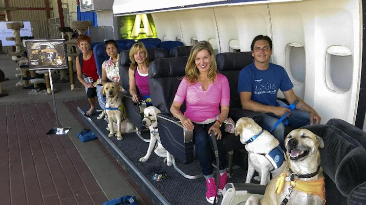 In this Aug 19, 2013, photo provided by Air Hollywood, Megan Blake, Air Hollywood K9 Flight School Program Director, sitting left, front row, with dog Super Smiley, far right, and other puppies from the Canine Companions for Independence pose for a photo during a K9 flight simulation at the America's Family Pet Expo, at the Orange County Fair Grounds in Costa Mesa, Calif. The idea was the brainchild of Talaat Captan, president and CEO of Air Hollywood, the world's largest aviation-themed film studio, who noticed a dog owner having a rough go getting a dog through airport security. (AP Photo/Air Hollywood, Sandra Lollino)