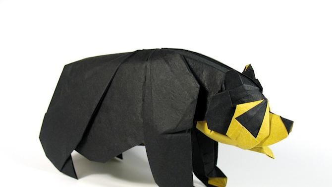 Origami art - Jucumari No.3. My final entry for the Spectacled bear Contest