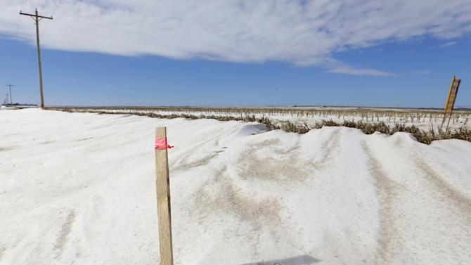 In this photo made on March 11, 2013, a wooden stick with a pink ribbon marks the proposed route of the Keystone XL pipeline through farmland near Bradshaw, Neb. Despite an apparent lessening in opposition to the pipeline, supporters and opponents are expected to pack the U.S. State Department's sole public hearing in Grand Island, Neb., on Thursday, April 18, 2013, to make their views known on the $7.6 billion Canada-to-Texas line. (AP Photo/Nati Harnik)
