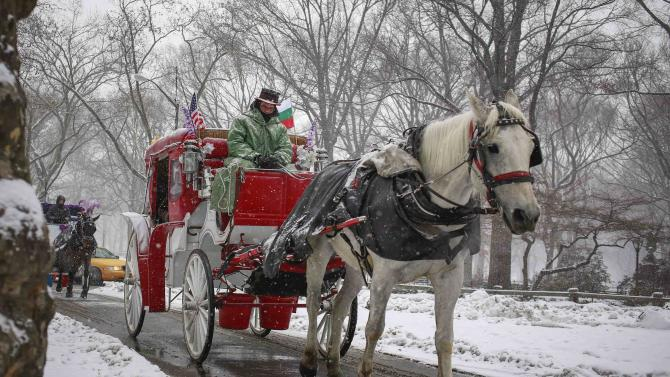 A horse-drawn carriage makes its way through Central Park during snowfall in New York