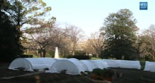 The 2010 White House winter garden, with plants growing snugly under hoops covered in plastic. (Photo: Whitehouse.gov)