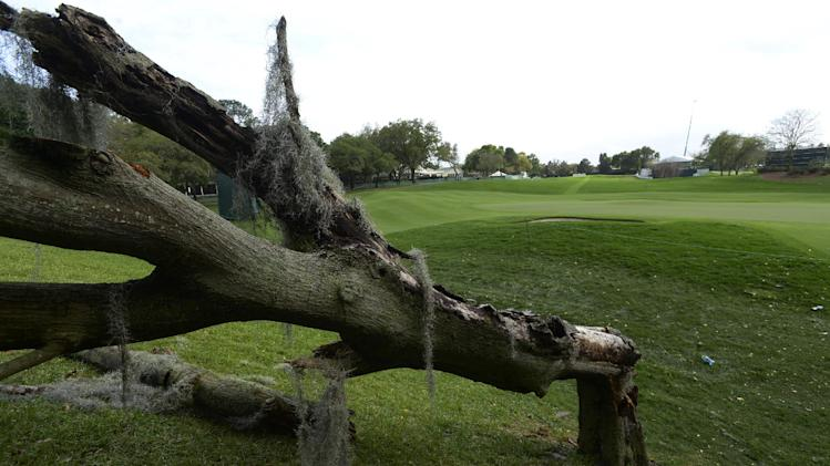 A toppled oak tree lays next to the second green after a severe thunderstorm passed through, causing a suspension of play, during the final round of the Arnold Palmer Invitational golf tournament in Orlando, Fla., Sunday, March 24, 2013.(AP Photo/Phelan M. Ebenhack)