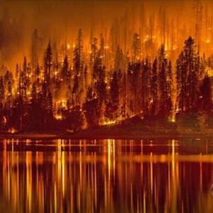 California community devastated by fast-moving wildfire