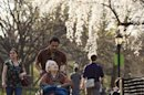A woman is pushed on a wheelchair underneath blossoming trees inside Central Park during a warm day in New York