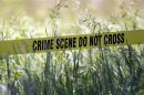 Yellow crime tape surrounds a field for Hoffa investigation, in suburban Detroit