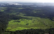 Deforested area along the border of the Xingu river, 140 Km from Anapu city in the Amazon rain forest, northern Brazil