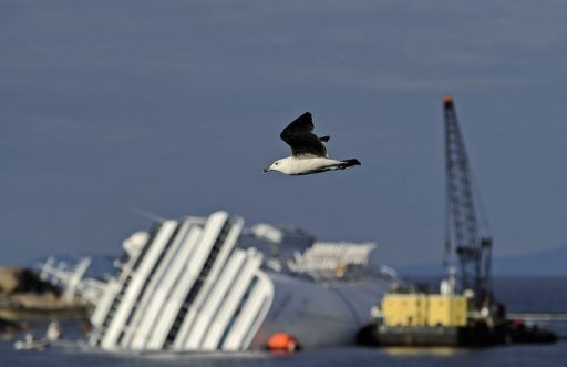 <p>A bird flies past the stricken cruise liner Costa Concordia lying aground in front of the Isola del Giglio (Giglio island) on January 26 after it hit underwater rocks. A total of 10 people are being investigated including Schettino and six other crew members, as well as three managers from ship owner Costa Crociere, which is part of the world's biggest cruise operator, US-based Carnival.</p>