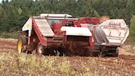 Potato harvesting requires mouldboard plowing, says the Federation of Agriculture.