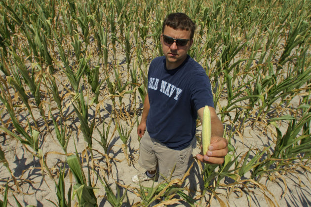 Steve Niedbalski shows his drought and heat stricken corn,  Wednesday, July 11, 2012 in Nashville Ill. Farmers in parts of the Midwest,  are dealing with the worst drought in nearly 25 years.  (AP Pho