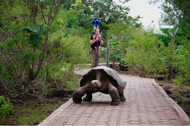 Google team captures Galapagos Island beauty for maps