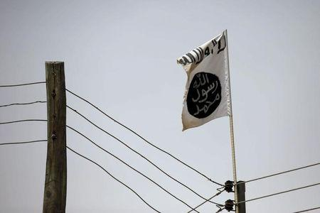 Boko Haram flag flies in Damasak