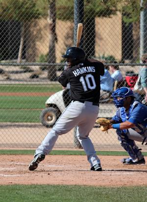 Chicago White Sox Minor League Update