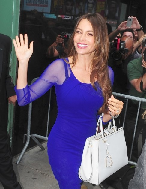Sofia Vergara heads into 'Good …