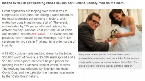 July: People who can't do math are excited about a charity pet wedding that cost $270K, raised $50K.