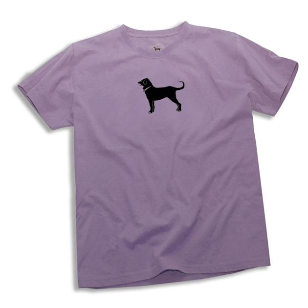 THEN: The Black Dog t-shirt turned Labradors into must-have accessories.