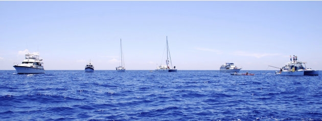 In this photo provided by Diana Nyad via the Florida Keys News Bureau, boats escorting endurance swimmer Diana Nyad ply the Florida Straits between Cuba and the Florida Keys Monday, Aug. 20, 2012. Aft
