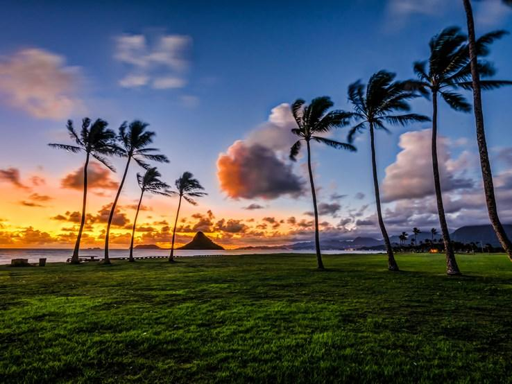 Surf's Up for Hawaii Startups?