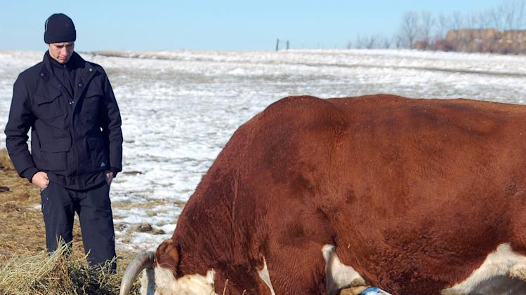 Kazakh cowboys tour ND, get cattle-tending tips
