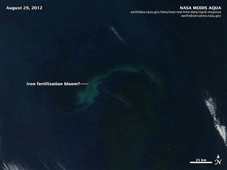 A NASA satellite image shows an apparent bloom of algae in the Pacific Ocean off Canada