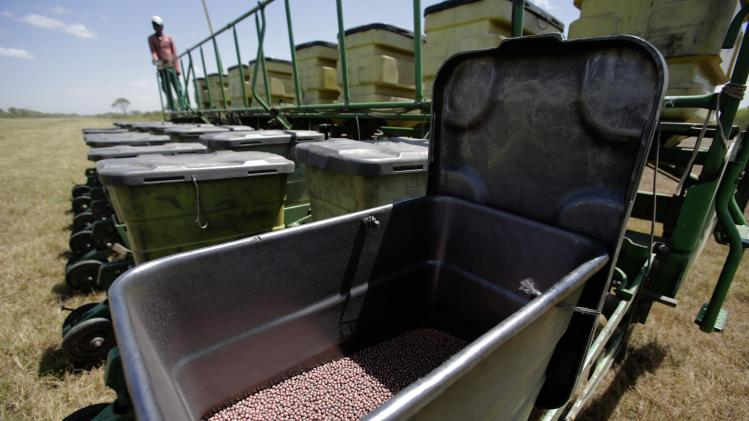 Soybean seeds for planting are placed in a container near Cuatro Canadas