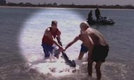British Grandfather Wrestles Shark in Oz