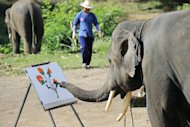 An elephant paints during a performance for tourists at the Maetaman Elephant camp in Chiang Mai, northern Thailand, on March 18, 2011. Camps and zoos featuring elephants tightrope walking, playing football or performing in painting contests employ almost 4,000 domesticated elephants for the amusement of tourists in the country