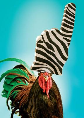 Reggie the rooster (voiced by Jeff Foxworthy ) in Warner Bros' Racing Stripes