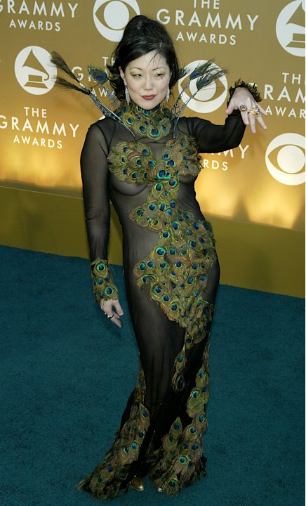 46th Annual Grammy Awards - Arrivals