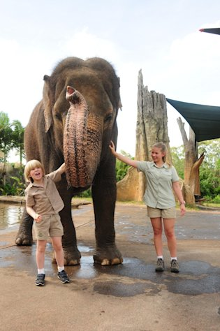 "This undated image provided by ""Growing Up Wild"", shows Robert Irwin, 8, left and Bindi Irwin,13, during the taping of an episode of ""Growing Up Wild"" at the Australia Zoo, in Brisbane, Aus. joined by an Asian elephant. ""Growing Up Wild,"" from Fremantle Media, can be seen exclusively on The Pet Collective, a new YouTube channel. (AP Photo/Growing Up Wild)"