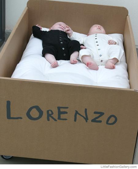 Cardboard Album Customizable Cot