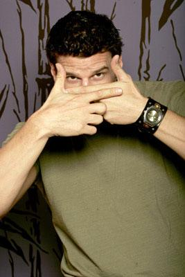 David Boreanaz 2005 Toronto Film Festival - 'These Girls' Portraits
