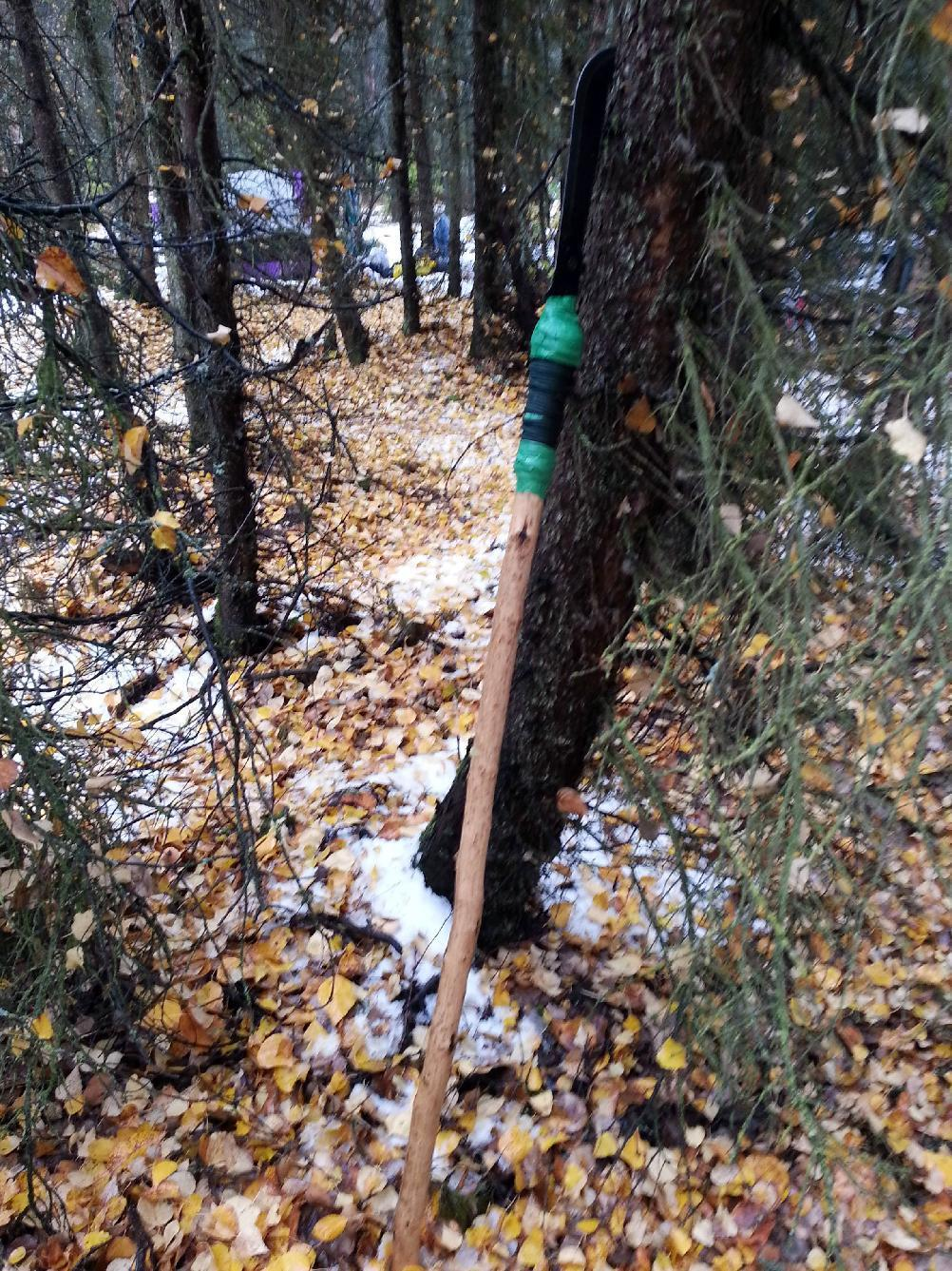 Homeless man in Anchorage uses homemade spear to kill bear