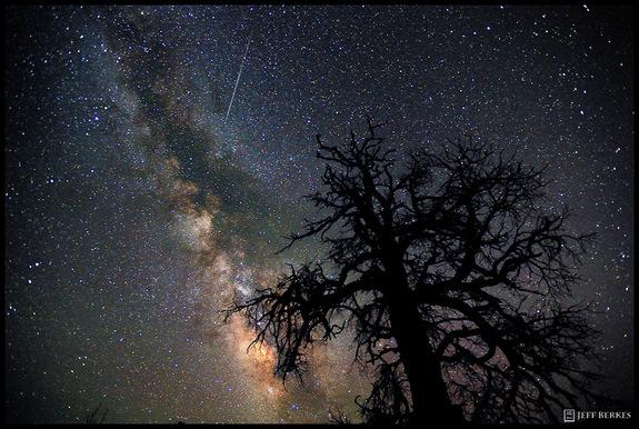 August Perseid Meteor Shower Has Long Legacy, Bright Future
