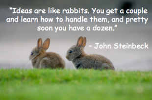 25 Secrets Of Great Copywriting From Classic Literary Masters image rabbits on the grass