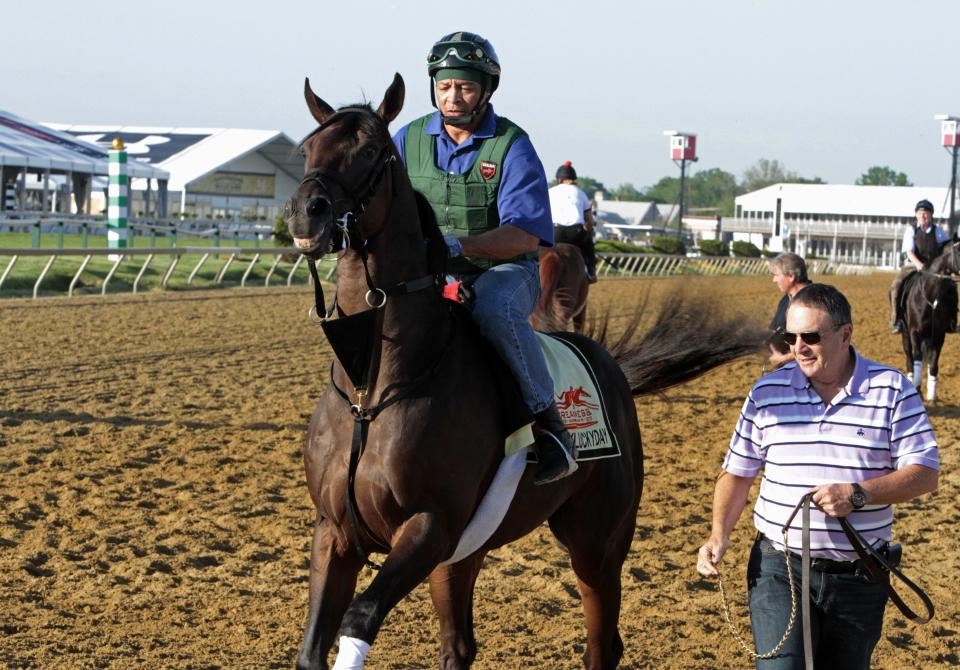 Preakness Stakes entrant Itsmyluckyday gets frisky as exercise rider Peter Shelton takes him to track at Pimlico Race Course Friday, May 17, 2013 in Baltimore. At right is trainer Eddie Plesa Jr. (AP Photo/Garry Jones)