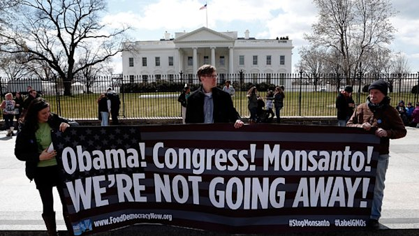 New Law Spurs Controversy, Debate Over Genetically Modified Crops