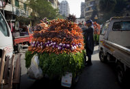 An Egyptian street vendor displays vegetables that are loaded on a cart for sale, in Cairo, Egypt, Thursday, Jan. 3, 2013. (AP Photo/Nasser Nasser)
