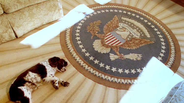 PRESIDENT BUSHS PET DOG