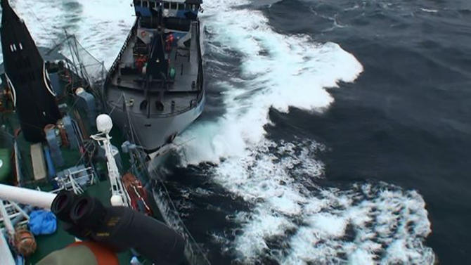 "Institute of Cetacean Research handout photo shows Sea Shepherd vessel ""The Bob Barker"" in contact with the port side stern of Japanese whaling ship Yushin Maru in the Southern Ocean"