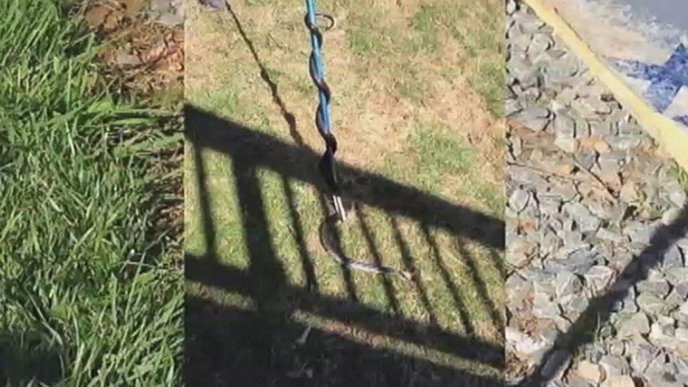 Snake Invasion Turns 'Dream House' Into Nightmare for Maryland Family, Lawyer Says