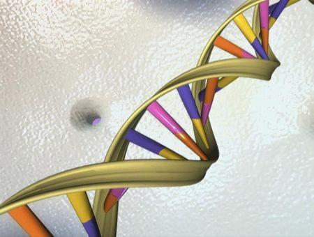 White House: ethics of human genome editing needs further review