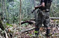 This file photo, released by Peruvian IDL institute, shows a Shining Path leftist guerrilla on a lookout at an undisclosed location in the jungle of southeastern Peru, in 2011. A Peruvian police officer who went missing more than two weeks ago during clashes with Shining Path rebels in the south of the country has been found alive, according to the interior ministry